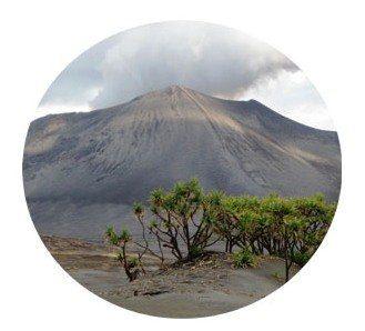 Vulkanische As